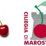 Ciliegia di Marostica (IGP)