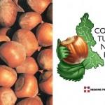 Nocciola Piemonte (IGP)