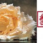 Radicchio variegato di Castelfranco (IGP)
