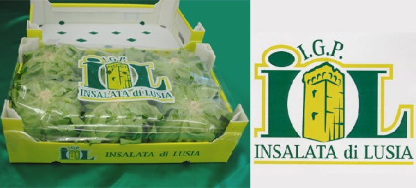 insalatadilusia
