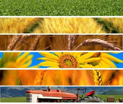 mix_agricoltura