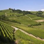Gli itinerari del gusto: Langhe, Monferrato e Roero