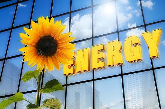 energy_flower