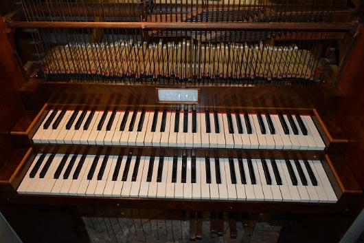 organo6