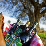 The authenticity of tradition in Frantoio Gentili's olive oil