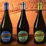 birre-maltovivo (Maltovivo, nuovi traguardi fanno volare il birrificio beneventano sul palcoscenico irlandese)